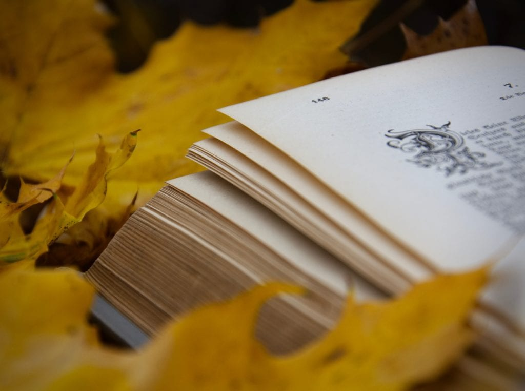 Unsere Top 5 Buch-Neuheiten für Dich!