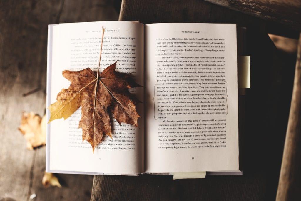 Oktober: Unsere Top 10 Buchtipps für dich