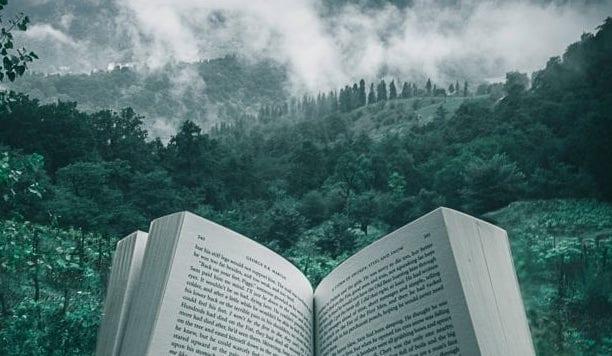 Top 10 Biografien
