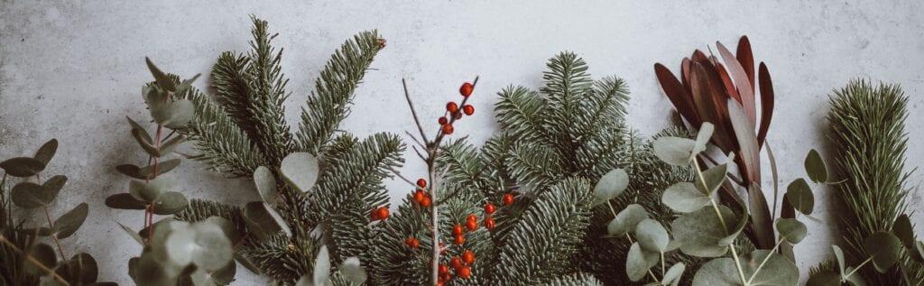 """""""Die echte Freude an Weihnachten"""" – eine Geschichte von Fiona Curiger"""
