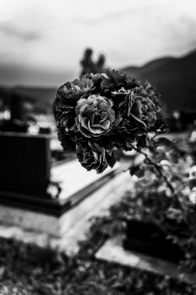 """""""So bleich wie Blumen aus Papier"""" – eine Geschichte von Sumeya Eren"""